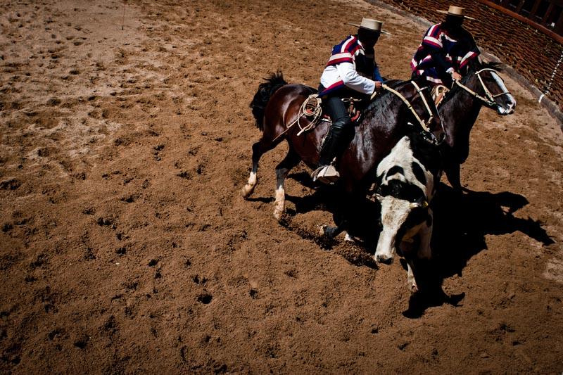 2012_chilean_rodeo_biba_05