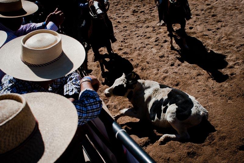 2012_chilean_rodeo_biba_07