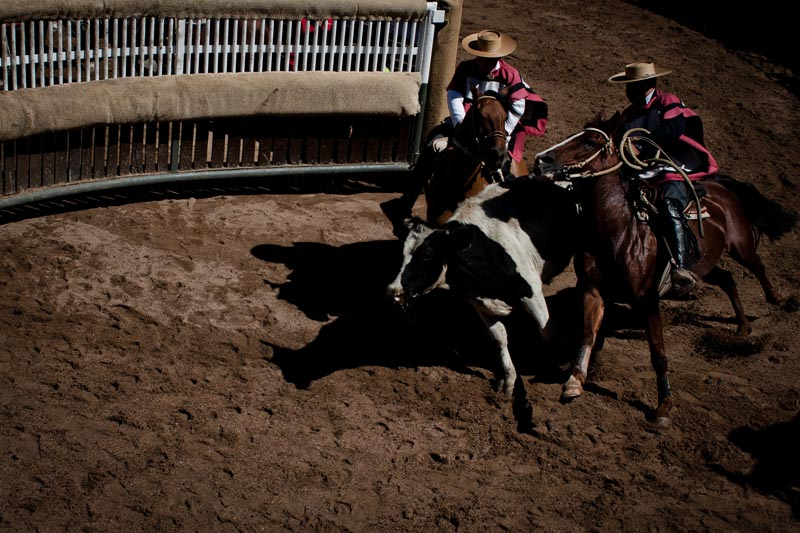 2012_chilean_rodeo_biba_13