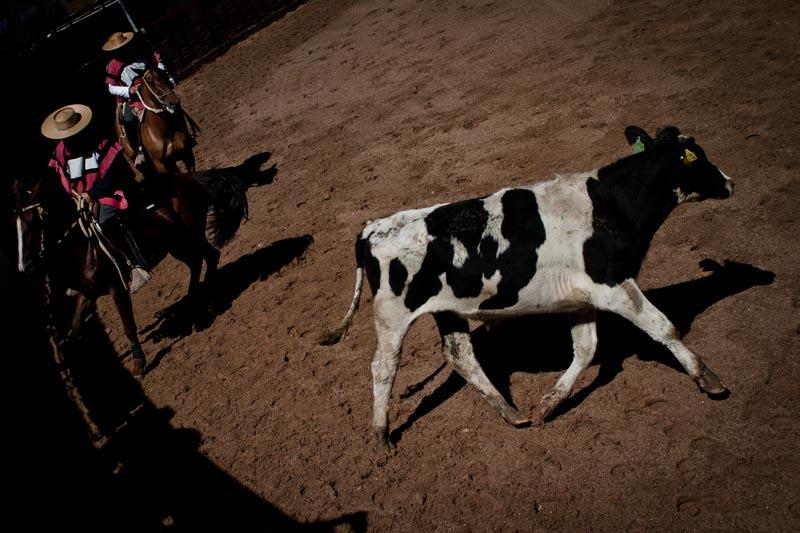 2012_chilean_rodeo_biba_14