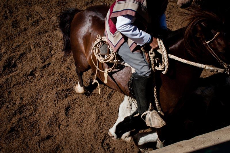 2012_chilean_rodeo_biba_15