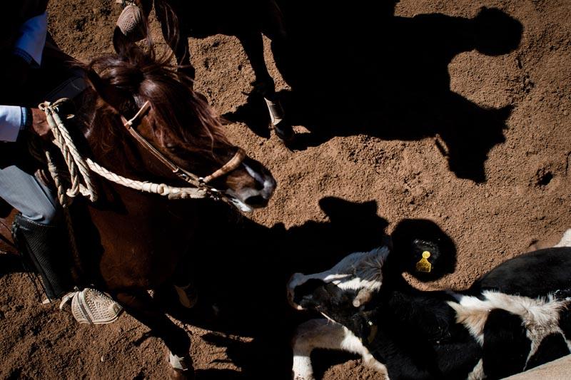 2012_chilean_rodeo_biba_16